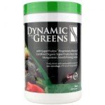 nutri-dyn_dynamic-greens-mango-mint_main_225x225