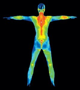 Image from thermography minneapolis session
